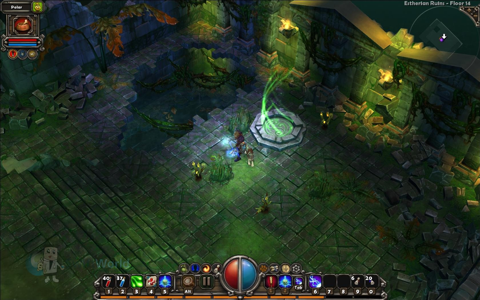 Torchlight Gorgeous Environments 2